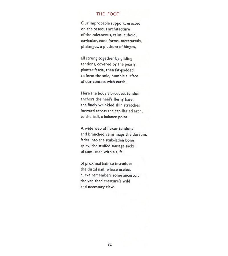 Alice Jones | Poetry | Anatomy | Sample